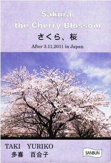 Sakura, the Cherry Blossom